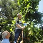 toparlar9-03-06-2012